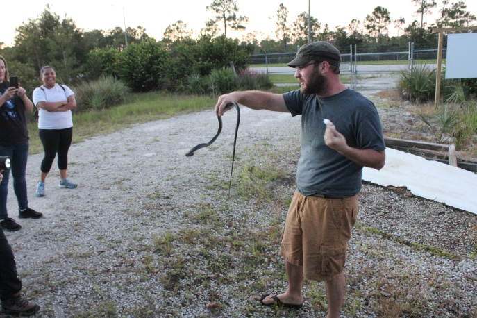 Guide Josh showing a native black racer